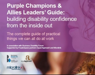 Cover of Allies and Champions Guide
