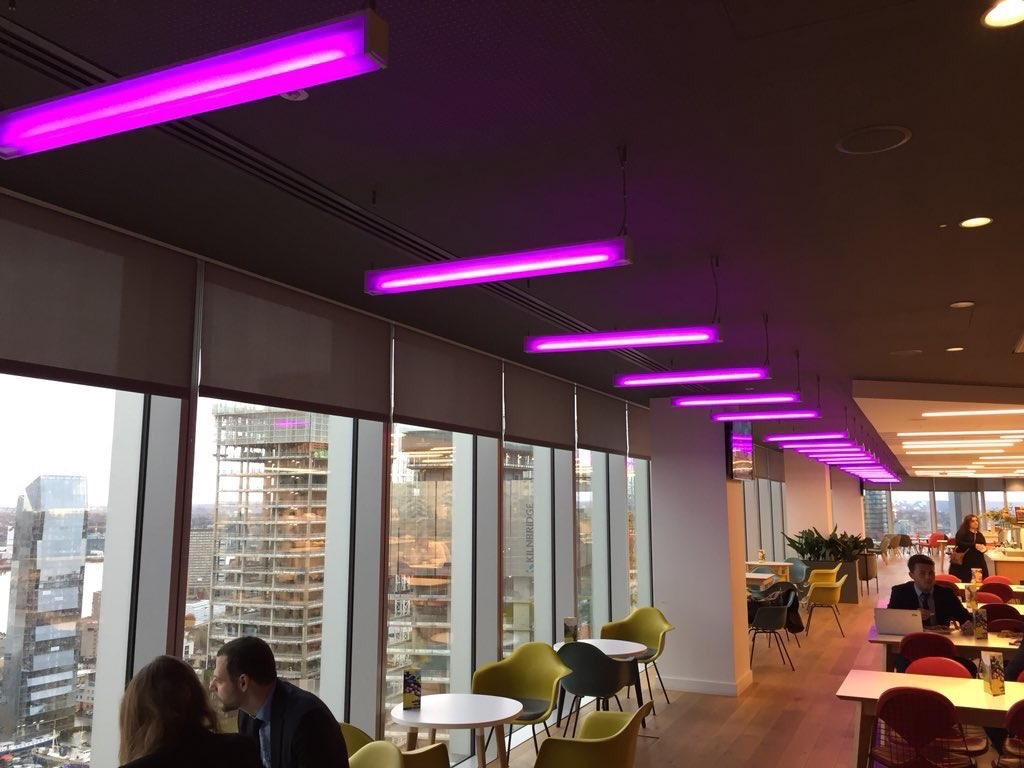 PurpleSpace members EY light up their London offices